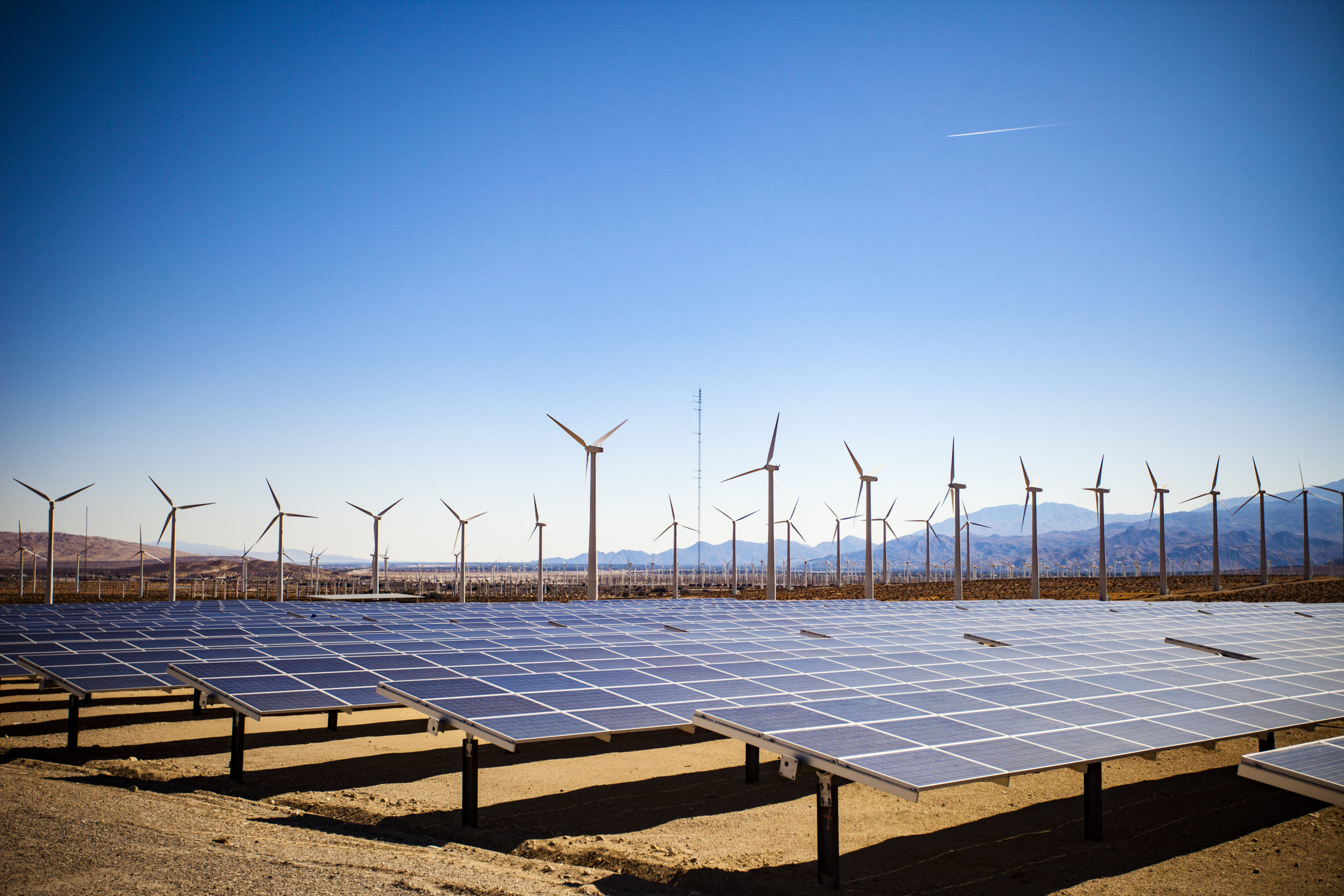Nest appoints Octopus Renewables to invest in clean energy projects