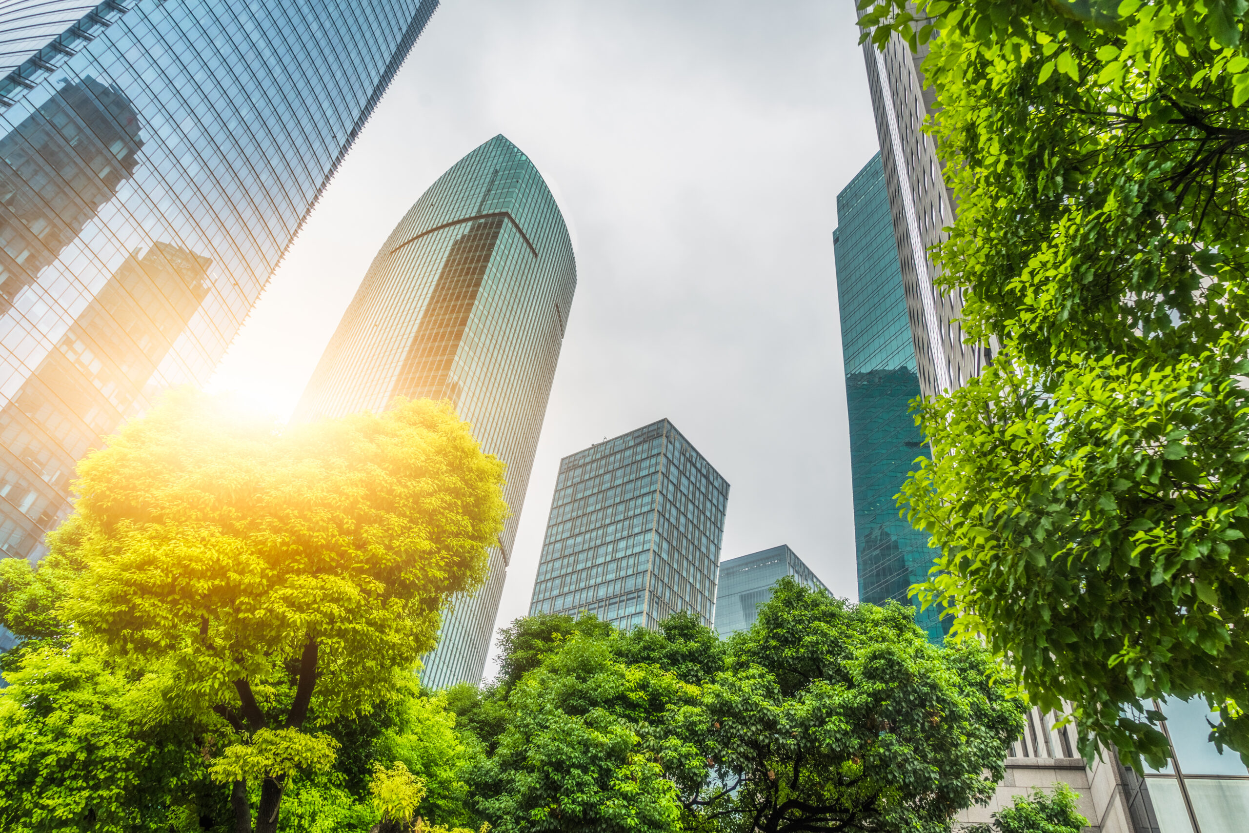 Schroders launches sustainable funds and cities index