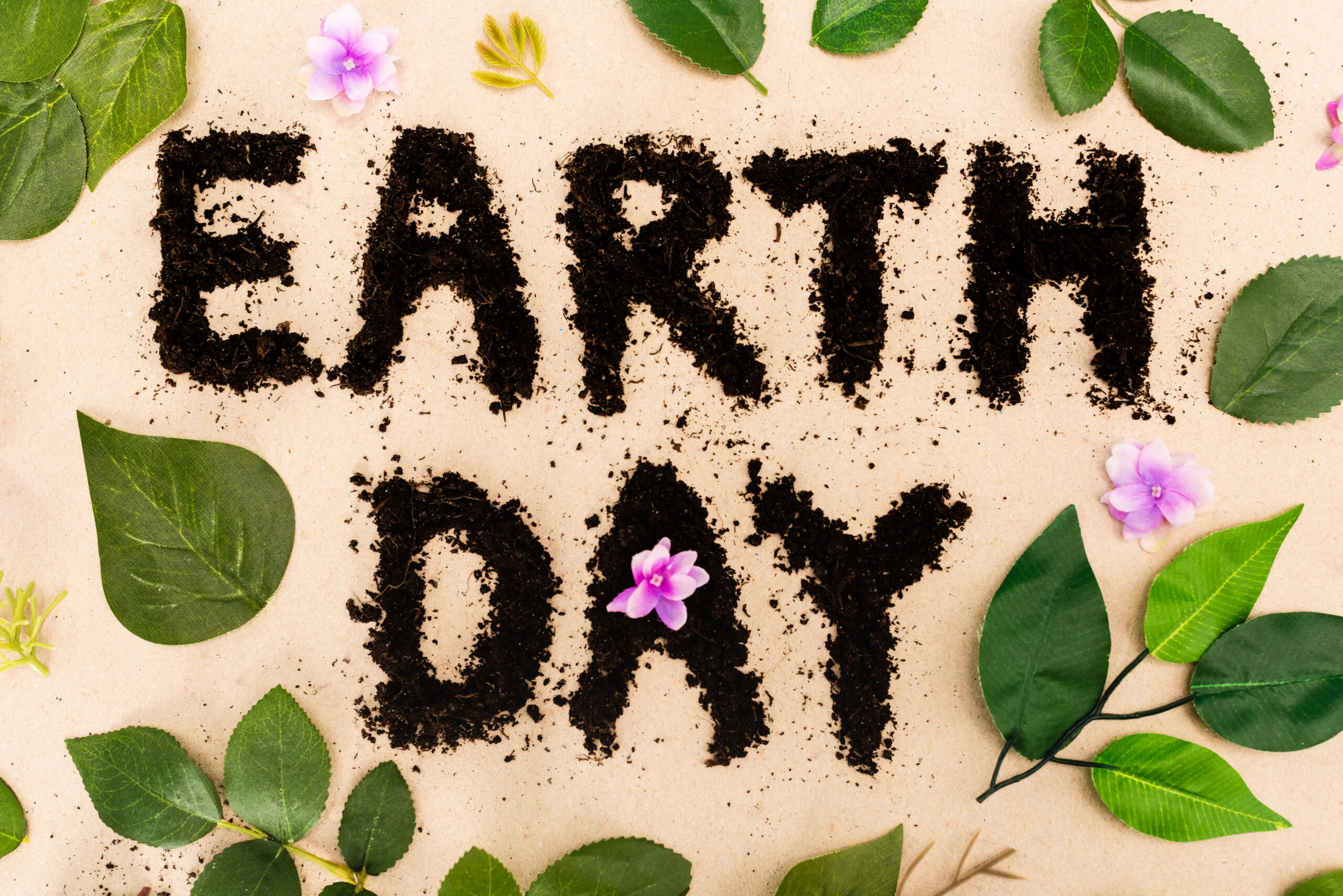 Earth Day: The gap between ambition and action can quickly be bridged